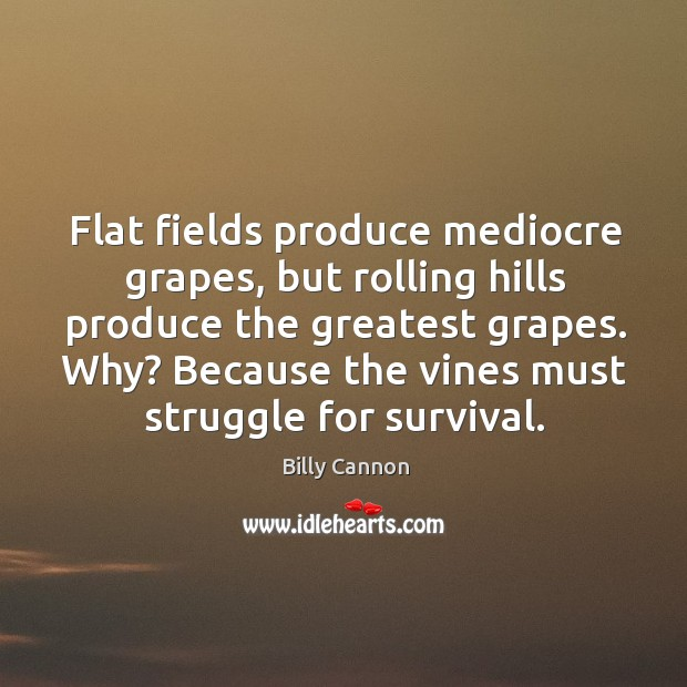 Image, Flat fields produce mediocre grapes, but rolling hills produce the greatest grapes.