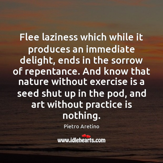 Flee laziness which while it produces an immediate delight, ends in the Image