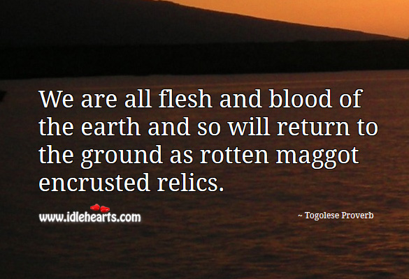 We are all flesh and blood of the earth and so will return to the ground as rotten maggot encrusted relics. Togolese Proverbs Image