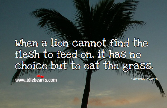 When a lion cannot find the flesh to feed on, it has no choice but to eat the grass. African Proverbs Image