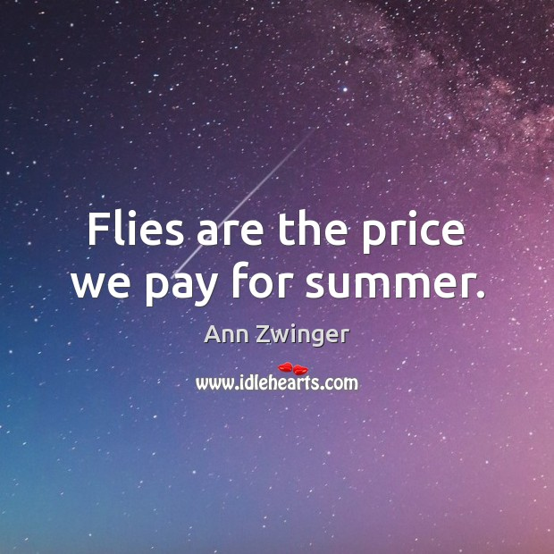 Flies are the price we pay for summer. Image