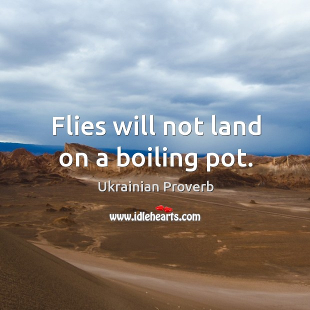 Flies will not land on a boiling pot. Ukrainian Proverbs Image