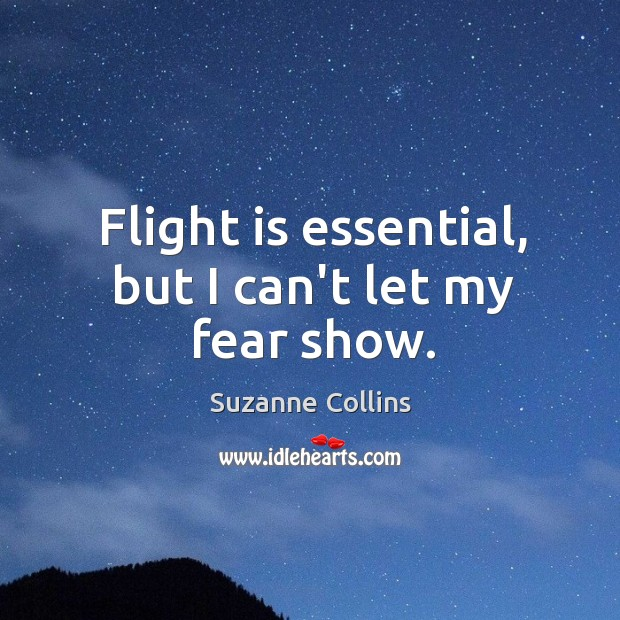 Image, Flight is essential, but I can't let my fear show.