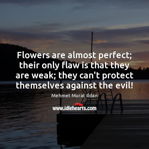Image, Flowers are almost perfect; their only flaw is that they are weak;