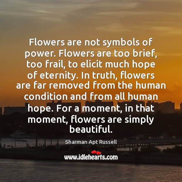 Flowers are not symbols of power. Flowers are too brief, too frail, Image