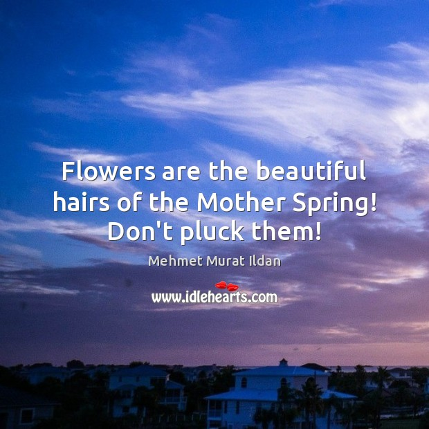 Image, Flowers are the beautiful hairs of the Mother Spring! Don't pluck them!