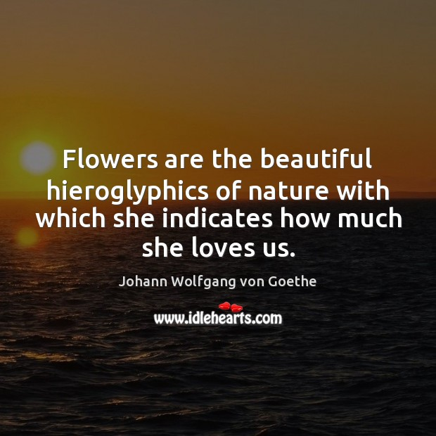 Flowers are the beautiful hieroglyphics of nature with which she indicates how Image
