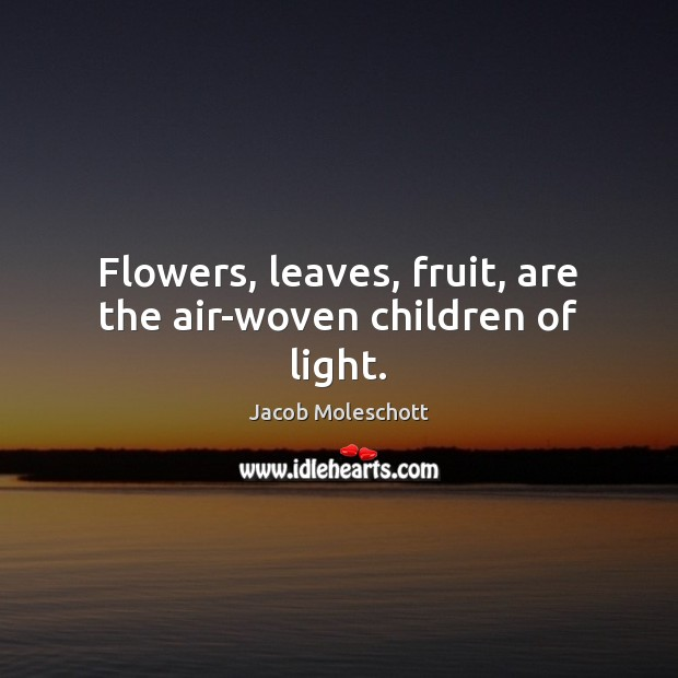 Flowers, leaves, fruit, are the air-woven children of light. Image