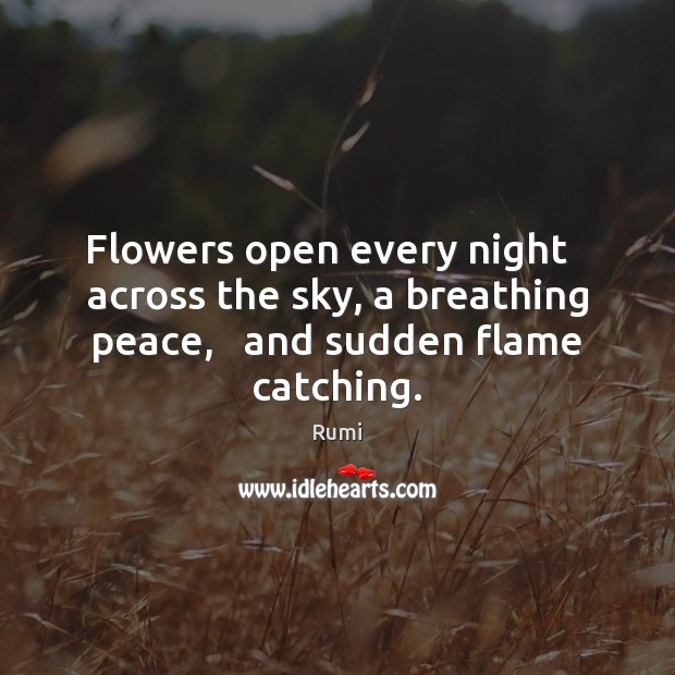 Image, Flowers open every night   across the sky, a breathing peace,   and sudden flame catching.