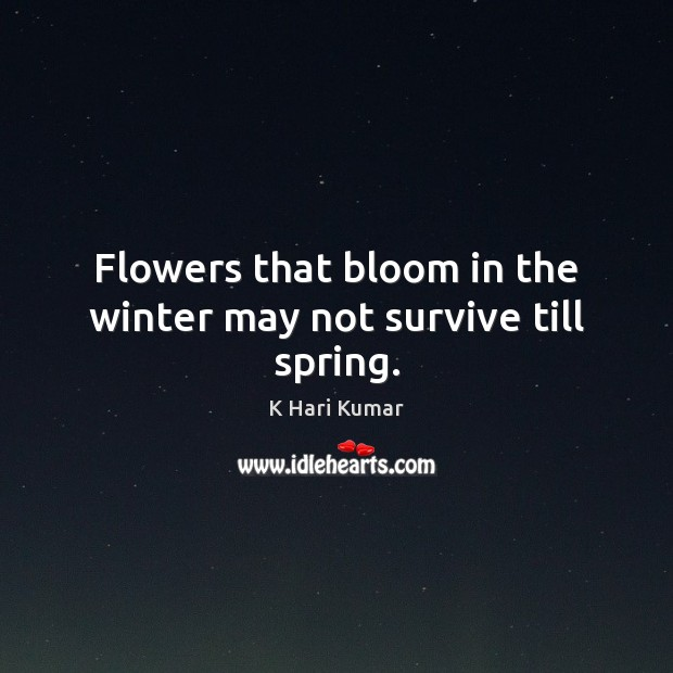 Flowers that bloom in the winter may not survive till spring. Image