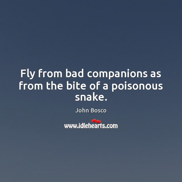 Fly from bad companions as from the bite of a poisonous snake. Image
