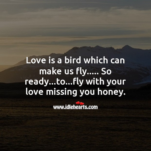Fly with your love Missing You Quotes Image