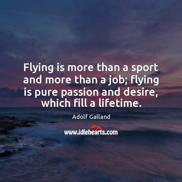 Flying is more than a sport and more than a job; flying Image