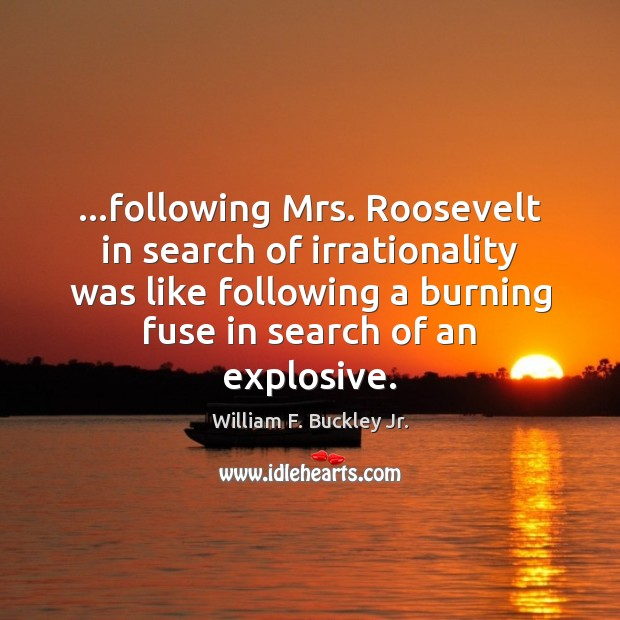 …following Mrs. Roosevelt in search of irrationality was like following a burning Image