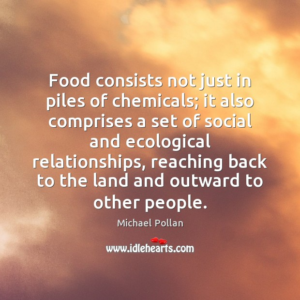 Food consists not just in piles of chemicals; it also comprises a Image