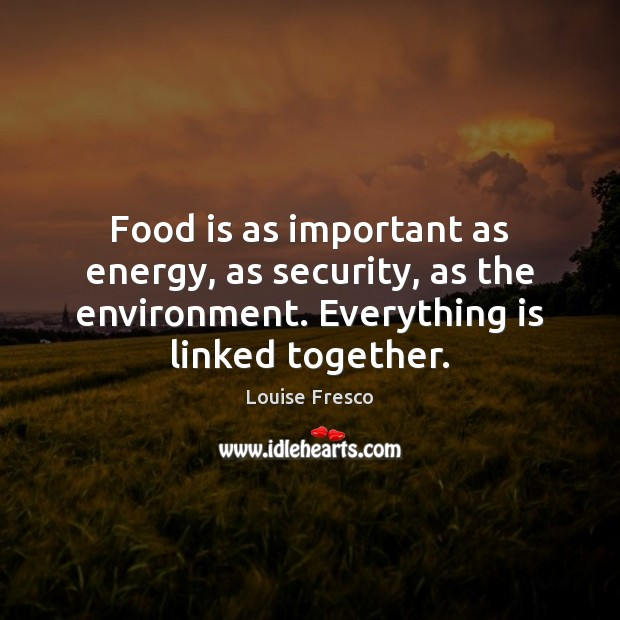 Food is as important as energy, as security, as the environment. Everything Louise Fresco Picture Quote