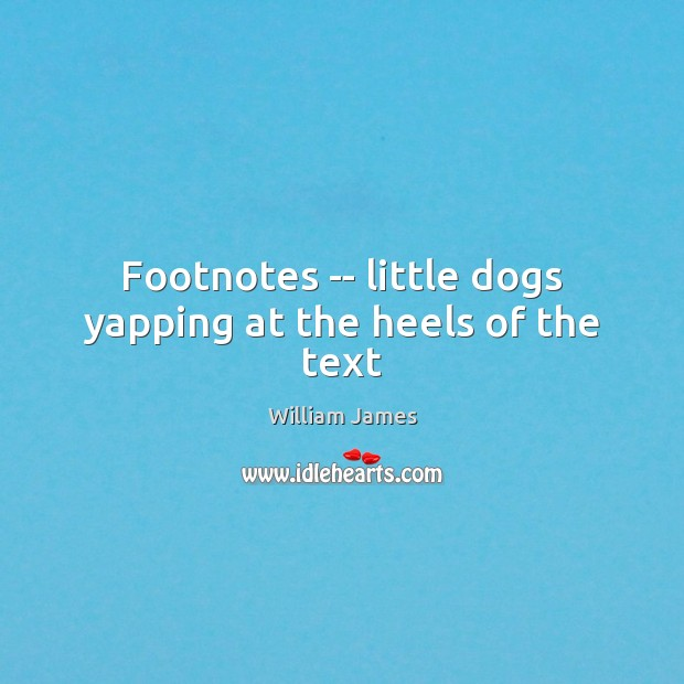 Footnotes — little dogs yapping at the heels of the text Image