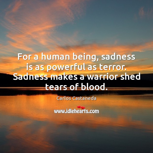Image, For a human being, sadness is as powerful as terror. Sadness makes