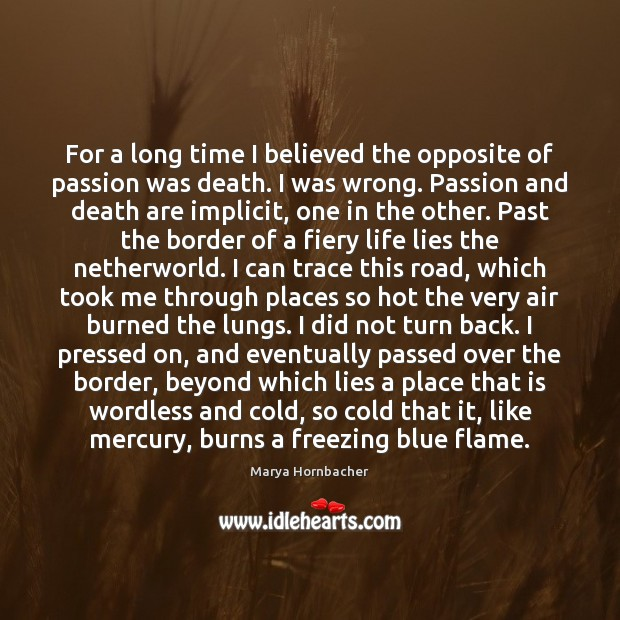 For a long time I believed the opposite of passion was death. Marya Hornbacher Picture Quote