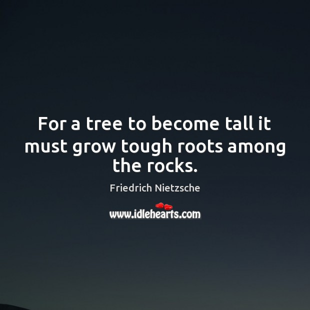 Image, For a tree to become tall it must grow tough roots among the rocks.
