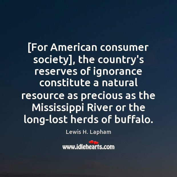 Image, [For American consumer society], the country's reserves of ignorance constitute a natural