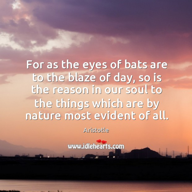 Image, For as the eyes of bats are to the blaze of day, so is the reason in our soul to the