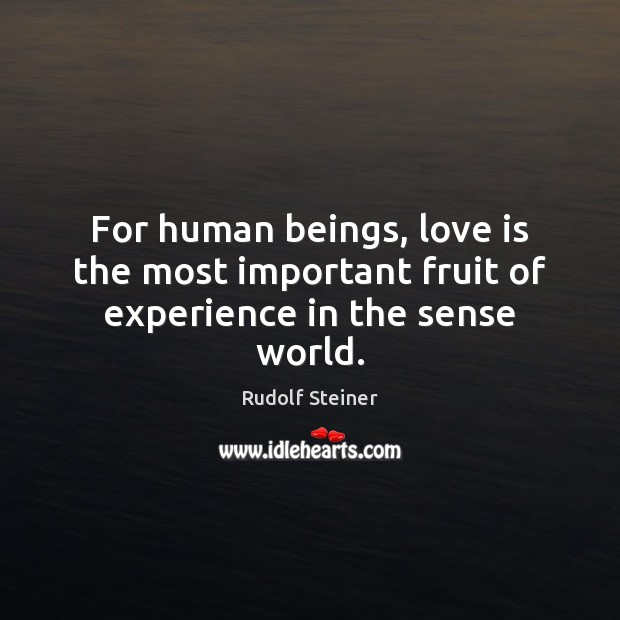 For human beings, love is the most important fruit of experience in the sense world. Rudolf Steiner Picture Quote