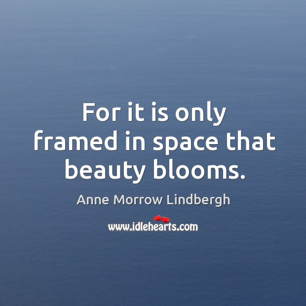 For it is only framed in space that beauty blooms. Image