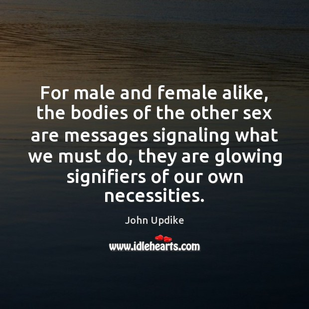 Image, For male and female alike, the bodies of the other sex are