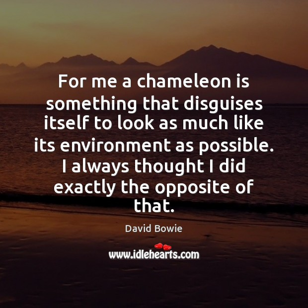 For me a chameleon is something that disguises itself to look as Image
