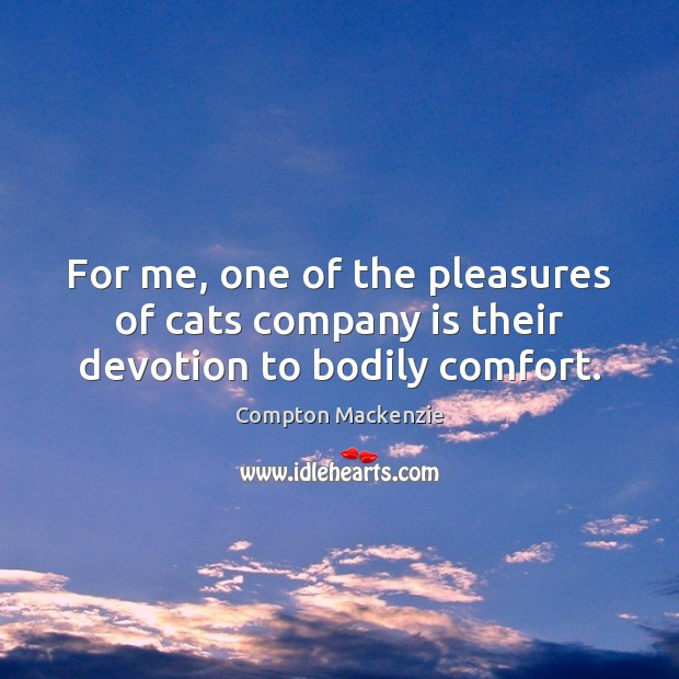 For me, one of the pleasures of cats company is their devotion to bodily comfort. Image