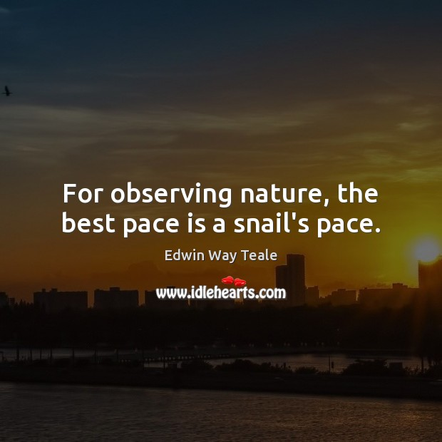For observing nature, the best pace is a snail's pace. Edwin Way Teale Picture Quote