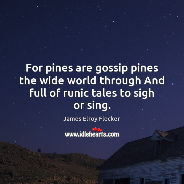 Image, For pines are gossip pines the wide world through And full of runic tales to sigh or sing.