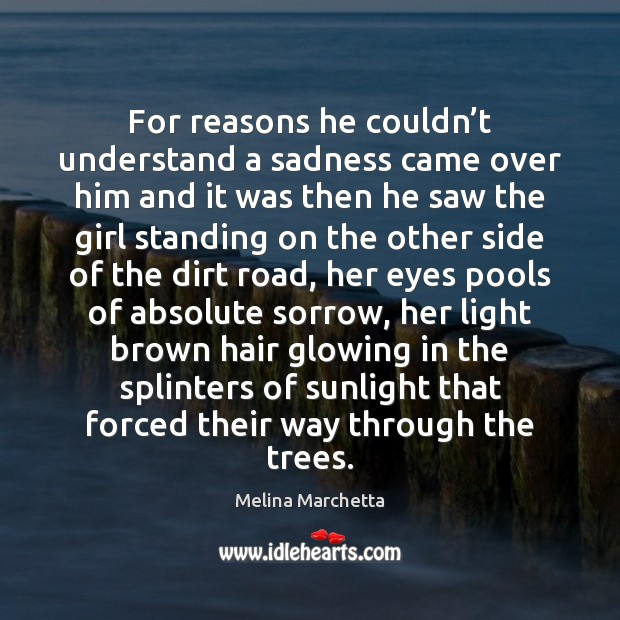For reasons he couldn't understand a sadness came over him and Melina Marchetta Picture Quote