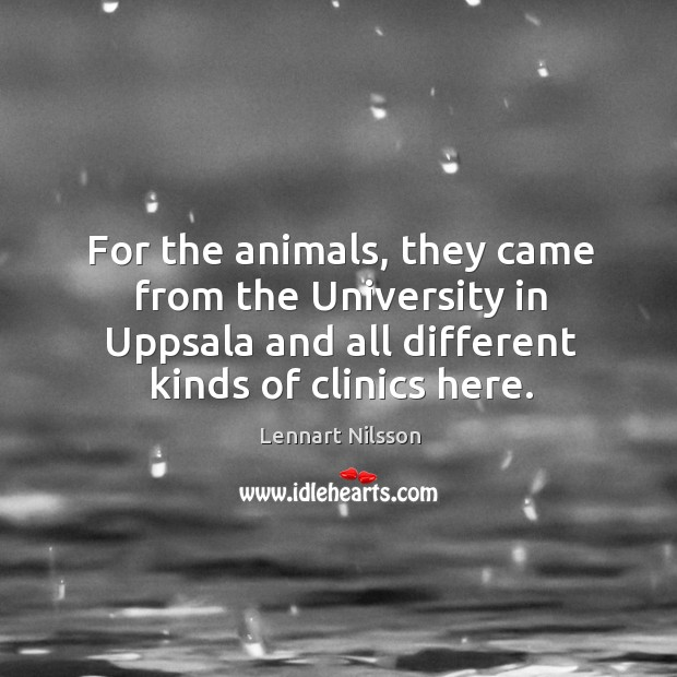 For the animals, they came from the university in uppsala and all different kinds of clinics here. Lennart Nilsson Picture Quote