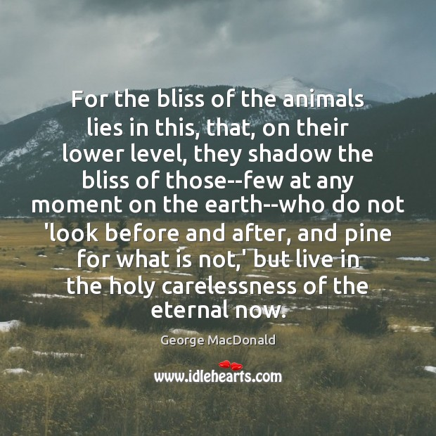 Image, For the bliss of the animals lies in this, that, on their