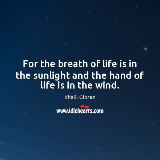Image, For the breath of life is in the sunlight and the hand of life is in the wind.
