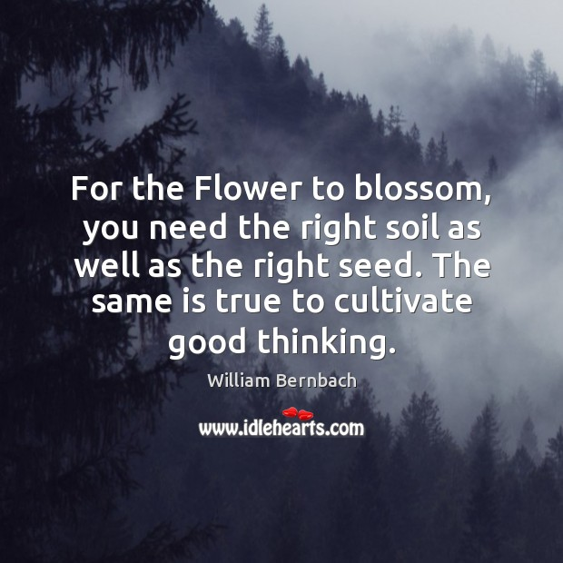 For the Flower to blossom, you need the right soil as well William Bernbach Picture Quote