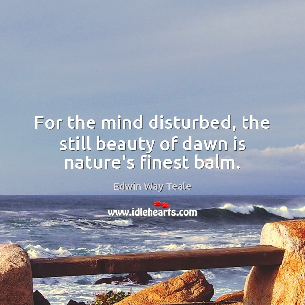 For the mind disturbed, the still beauty of dawn is nature's finest balm. Edwin Way Teale Picture Quote