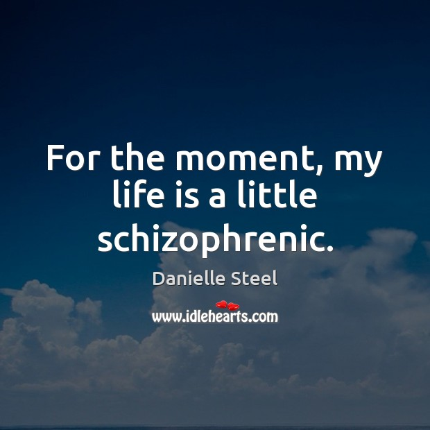 For the moment, my life is a little schizophrenic. Danielle Steel Picture Quote
