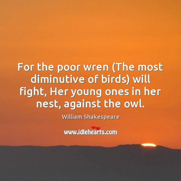 For the poor wren (The most diminutive of birds) will fight, Her Image