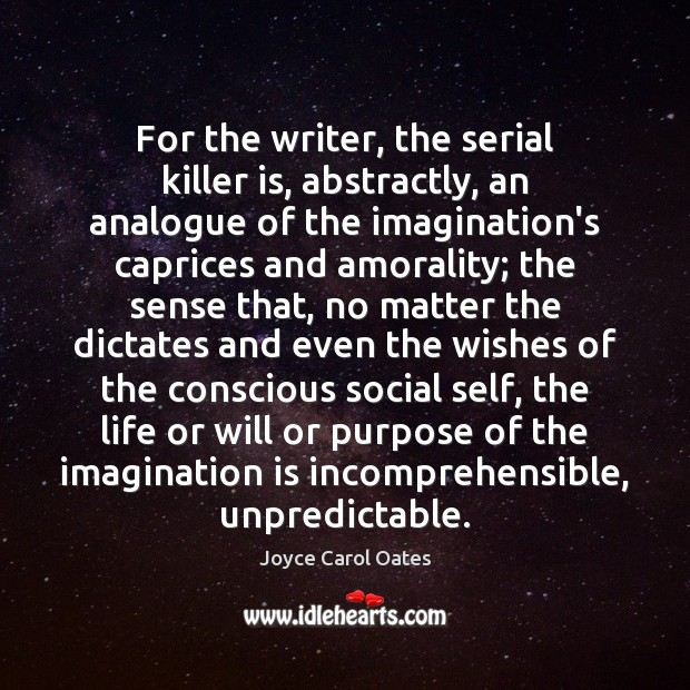 Image, For the writer, the serial killer is, abstractly, an analogue of the