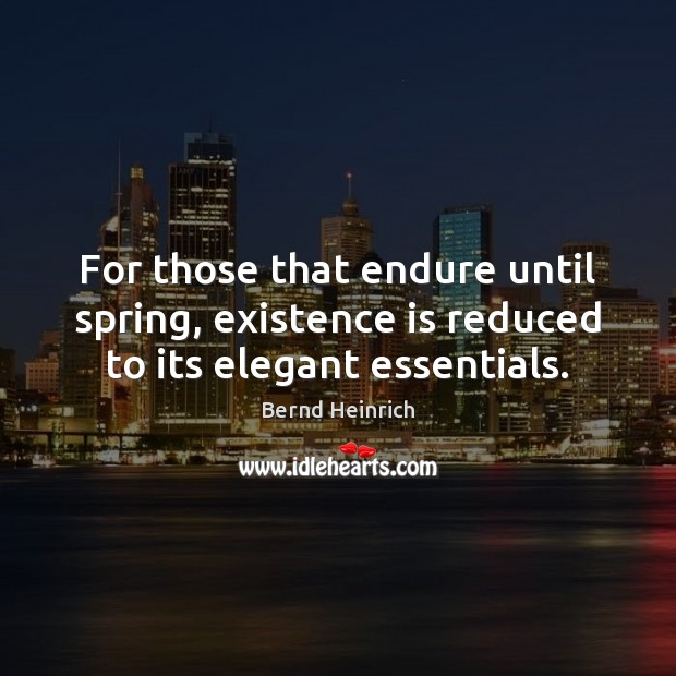 For those that endure until spring, existence is reduced to its elegant essentials. Image