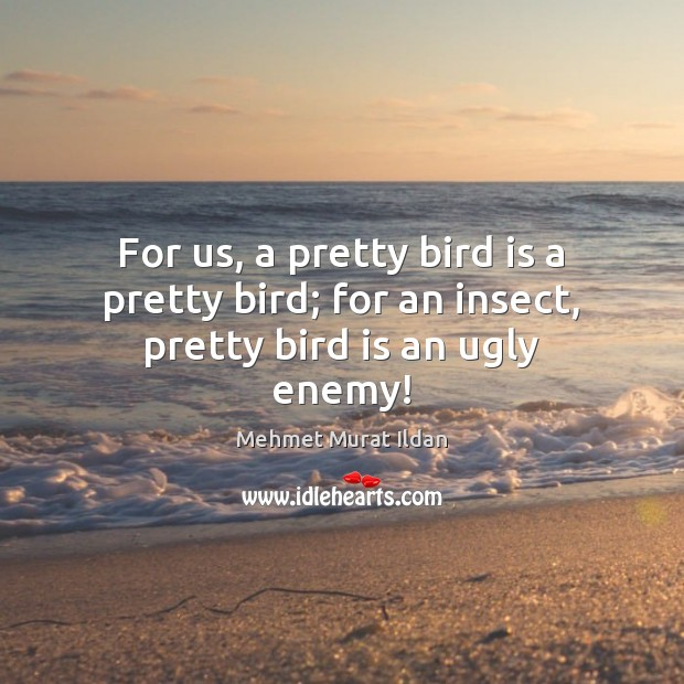 For us, a pretty bird is a pretty bird; for an insect, pretty bird is an ugly enemy! Image