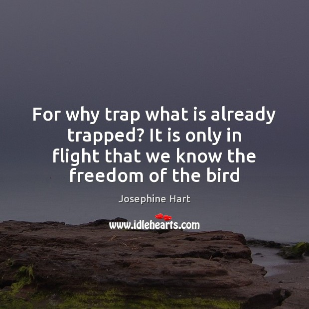 For why trap what is already trapped? It is only in flight Josephine Hart Picture Quote