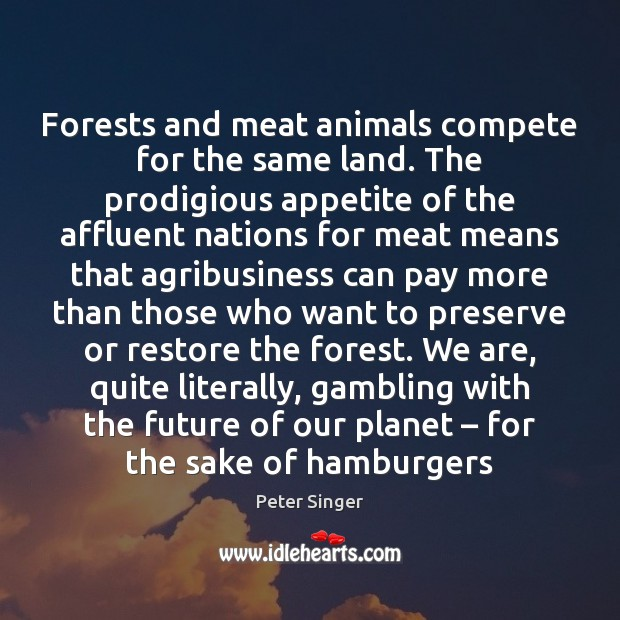 Image, Forests and meat animals compete for the same land. The prodigious appetite