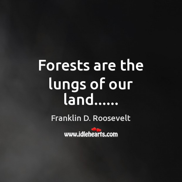 Forests are the lungs of our land…… Franklin D. Roosevelt Picture Quote
