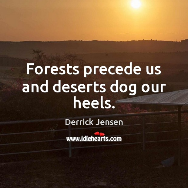 Forests precede us and deserts dog our heels. Image