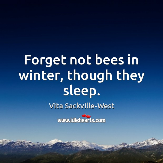 Forget not bees in winter, though they sleep. Vita Sackville-West Picture Quote