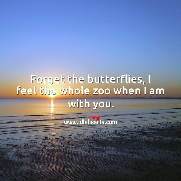 Forget the butterflies, I feel the whole zoo when I am with you. Relationship Quotes Image